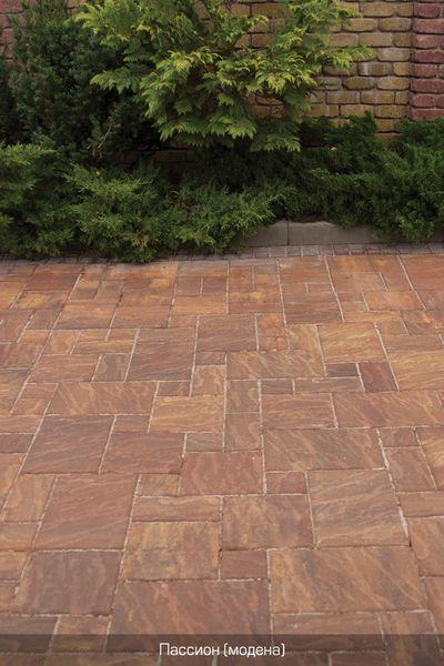 Тротуарная плитка Пассион (модена) (6 см)