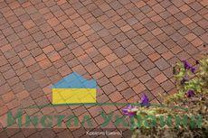 Тротуарная плитка Креатив (сиена) (6 см)