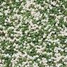 Ceresit CT 77 цвет 51 Мозаичная штукатурка 1,4-2,0 мм