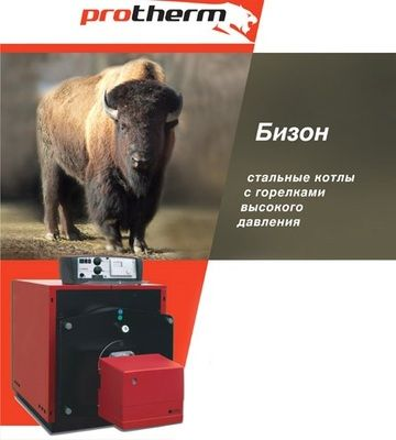 Газовый котел Protherm БИЗОН NO 200 цена