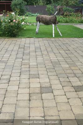 Тротуарная плитка Квадрат Антик 160х160 (горчичный полный прокрас) (9 см) цена