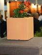Бетонная ваза Куб малый 180х180х180 (черный) цена