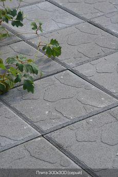 Тротуарная плитка Плита 300х300 (серый) для пешеходной зоны (4 см)